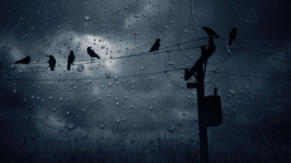 Påklædning i regnen